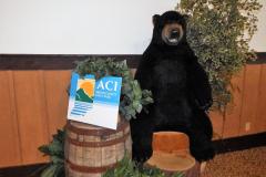 2017 ACI Conference