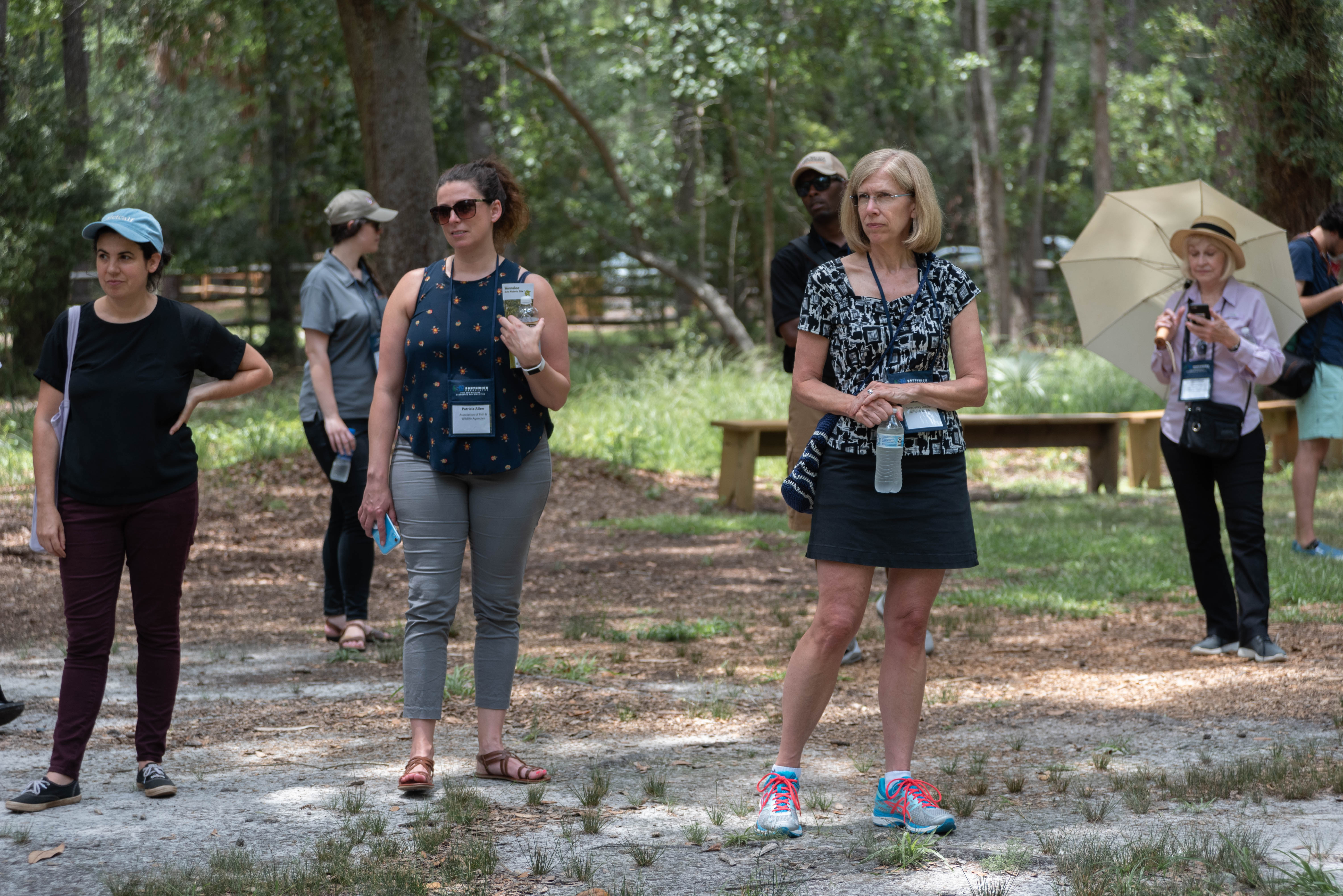 Wormsloe_010_ML